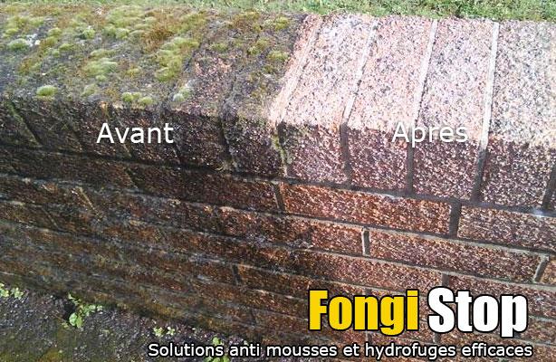 Nettoyant fa ade et terrasse surpuissant - Enlever mousse terrasse beton ...