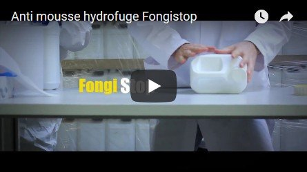 Les anti-mousses et hydrofuges fongistop